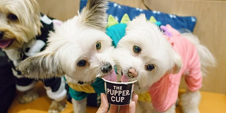 Doggy Ice Cream Social tickets