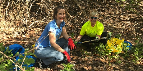 Baker Park Trash Pickup and Invasive Plant Removal tickets