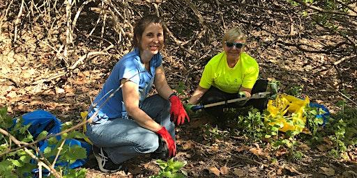 Baker Park Trash Pickup and Invasive Plant Removal