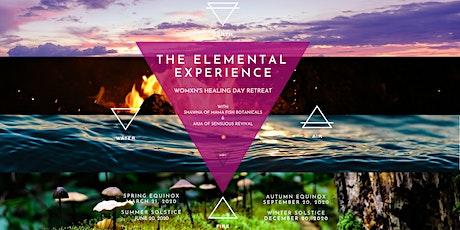 Elemental Womxns Day Retreat(s) tickets