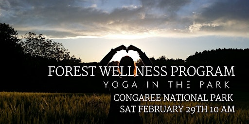 February Forest Wellness - Yoga in the Park
