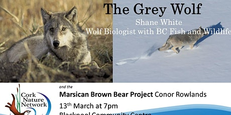 The Grey Wolf and the Marsican Bear tickets