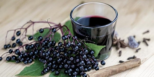 Elderberry Syrup and Immunity Workshop