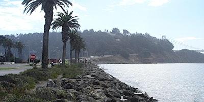 Treasure+Island%3A+Celebrating+the+Bay+Area%E2%80%99s
