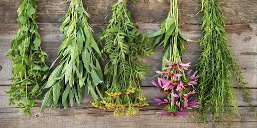 Culinary Herbal Centerpiece Workshop