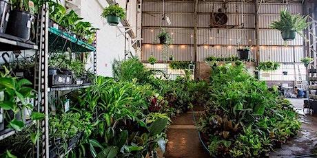 Richmond - Huge Indoor Plant Warehouse Sale - Tropicana Party tickets