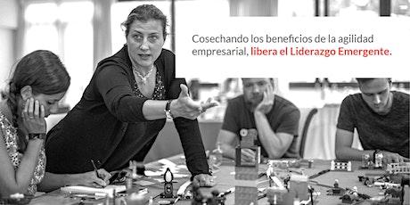 X-Course: Cosechando los beneficios de la agilidad empresarial, libera el Liderazgo Emergente. entradas