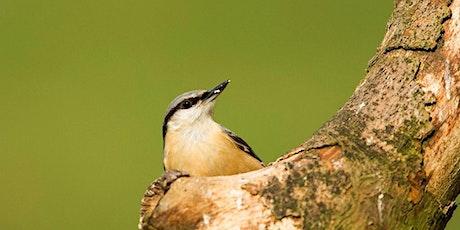 CANCELLED Spring Bird Explorer Walk tickets