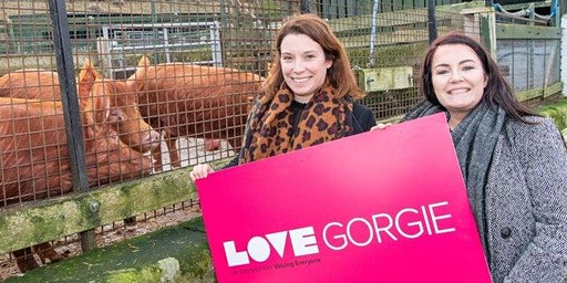Gorgie Farm - Reopening!