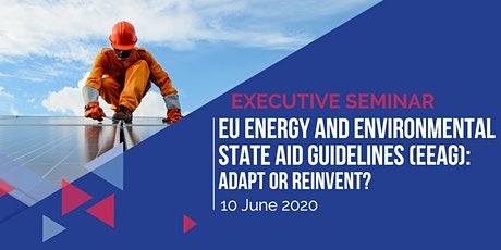 EU Energy and Environmental State Aid Guidelines (EEAG): Adapt or Reinvent? tickets