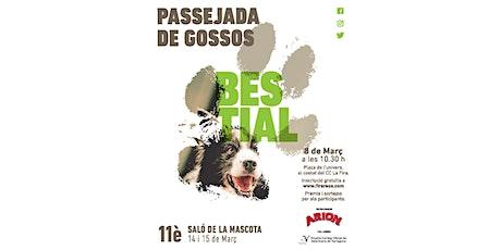 Passejada de Gossos Bestial 2020 (Diumenge 8 de març) tickets