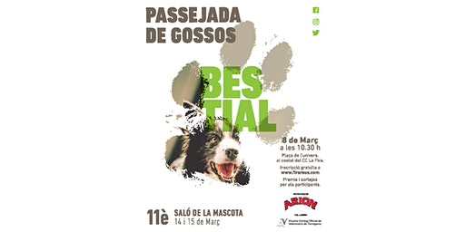 Passejada de Gossos Bestial 2020 (Diumenge 8 de març)