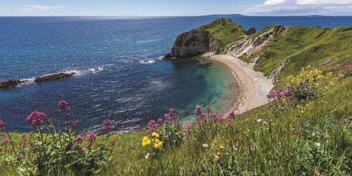 Visit Dorset - Helping your tourism business to thrive