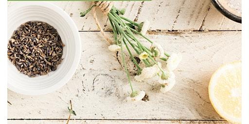 Herbal Medicine—Mother Nature's Gift