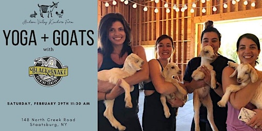 Hudson Valley Kinders Farm YOGA + GOATS with Black Snake Brewing Company
