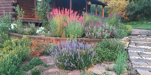 Native Plants and Their Pollinators