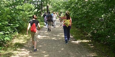 Walk in the Woods: Shepherdstown C&O Canal
