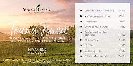Conoce la finca botánica de Young Living Ecuador entradas