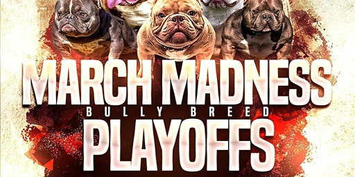 March Madness Bully Breed Playoffs