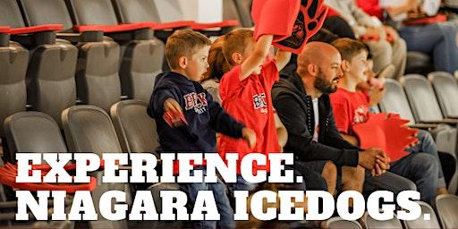 Brock Alumni Experience Niagara Ice Dogs