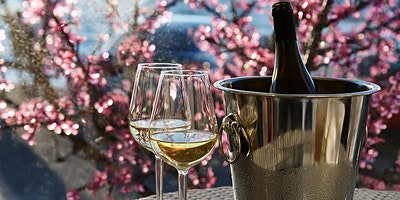 Affordable Bordeaux Discoveries