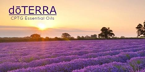 Intro to doTERRA Essential oils, doTERRA Den - Eau Claire WI