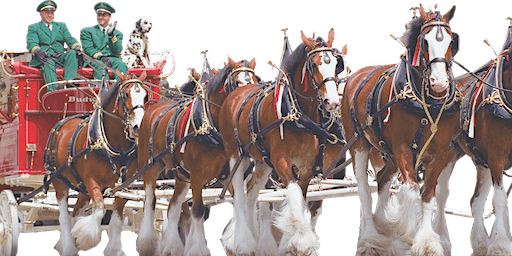 Horse Capital Parade Presented by Live Oak International
