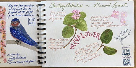 NATURE JOURNALING CLASS (Monthly/4th Thursdays) tickets