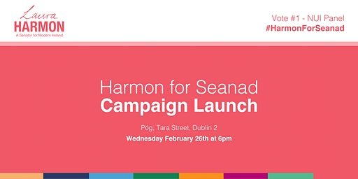 Campaign Launch - Laura Harmon For Seanad NUI Panel