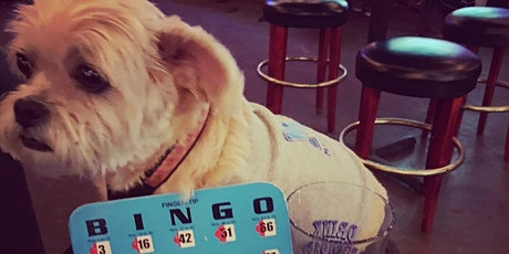 Bring Your Dog To Bingo at Loflin Yard tickets