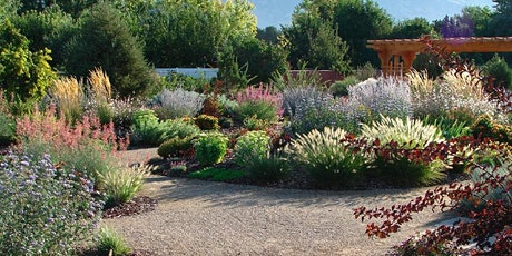 Waterwise Perennials - Walk and Talk Class Series tickets