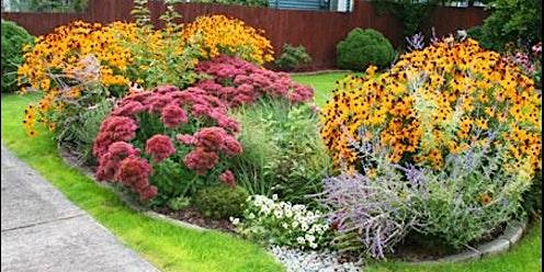 Wildflowers and Rain Gardens