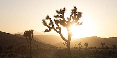 365 Wellness Restorative - Mind | Body | SOL Retreat tickets