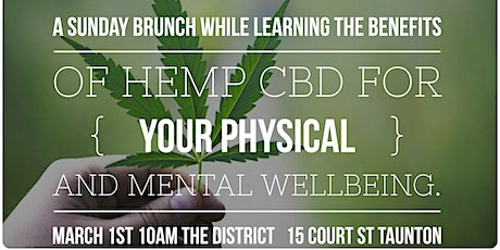 Cocktails, Cannolis + Cannabis - Sunday Brunch- Learn the Benefits of  CBD tickets