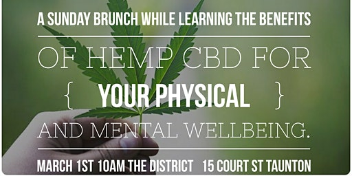 Cocktails, Cannolis + Cannabis - Sunday Brunch- Learn the Benefits of  CBD