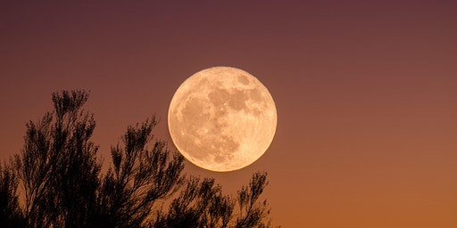 Full Moon:  Sound Bath Meditation