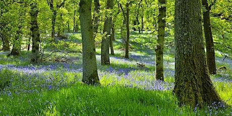 Nature Walk & Photography Training tickets