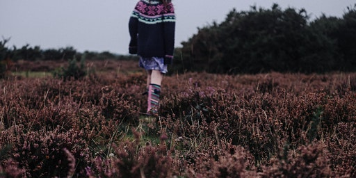 Replenish and reconnect  - meditative nature walk