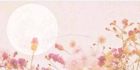 Sacred Sisterhood-Full Moon Meditation tickets