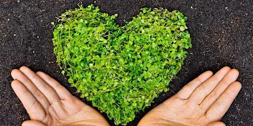 Women's healing circle: Healing Your Heart Chakra