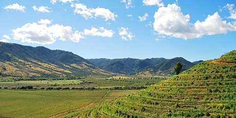 Chile's Colchagua Valley - Wine Education Seminar tickets