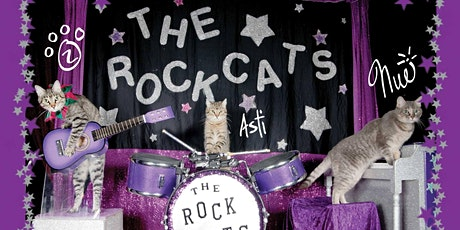Party with The Amazing Acro-cats! tickets