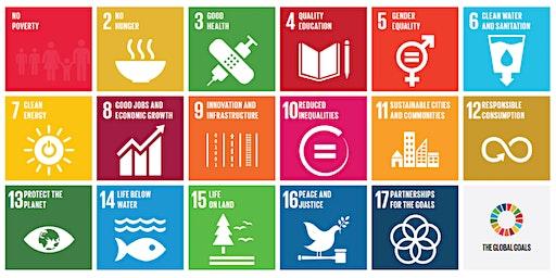 Sustainable Development Goals workshop