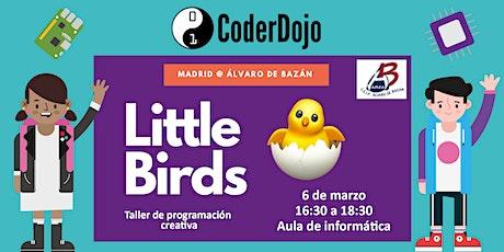 CoderDojo - Little Birds returns entradas