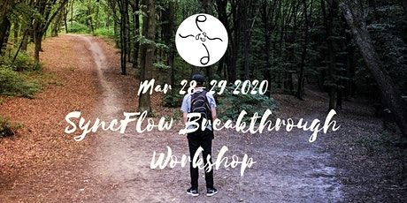 March 2020 SyncFlow Breakthrough Workshop tickets