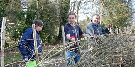 Hedgelaying - a traditional woodland craft tickets