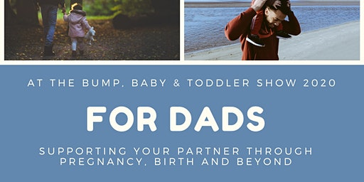 Supporting your partner through pregnancy, birth and beyond : a holistic dad's perspective.