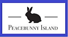 STEMbunnies, a program of Peacebunny Islands Inc. logo
