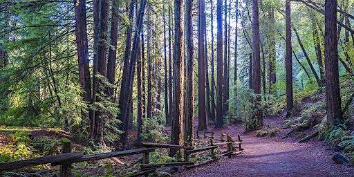 Best Hikes: Golden Spike, West Ridge Trail Loop (8.1 miles) [Oakland]