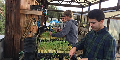 Native Plant Nursery Training: Collecting, Cleaning & Sowing Seed tickets